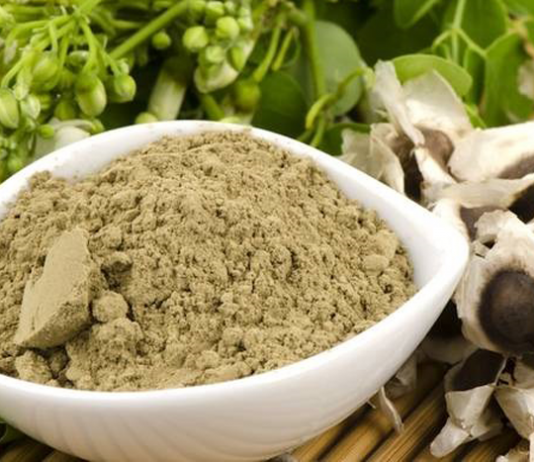 Kratom Powder vs Extracts The Facts